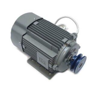 Электродвигатель взрывозащищенный YBJY-80M2-4